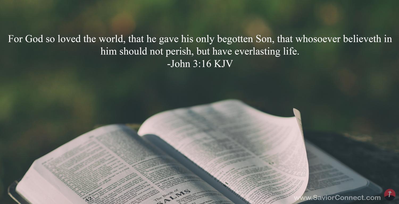 26137-bible-beautiful-kjv-john-3-16
